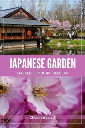 Spring at the Japanese Garden of Hasselt, in Limburg, Belgium