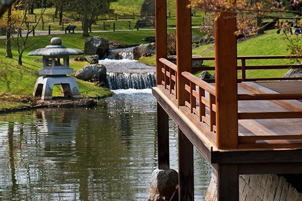 The Japanese garden is tranquilly zen
