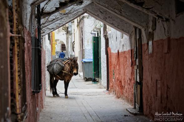 Medina of Tétouan, Morocco