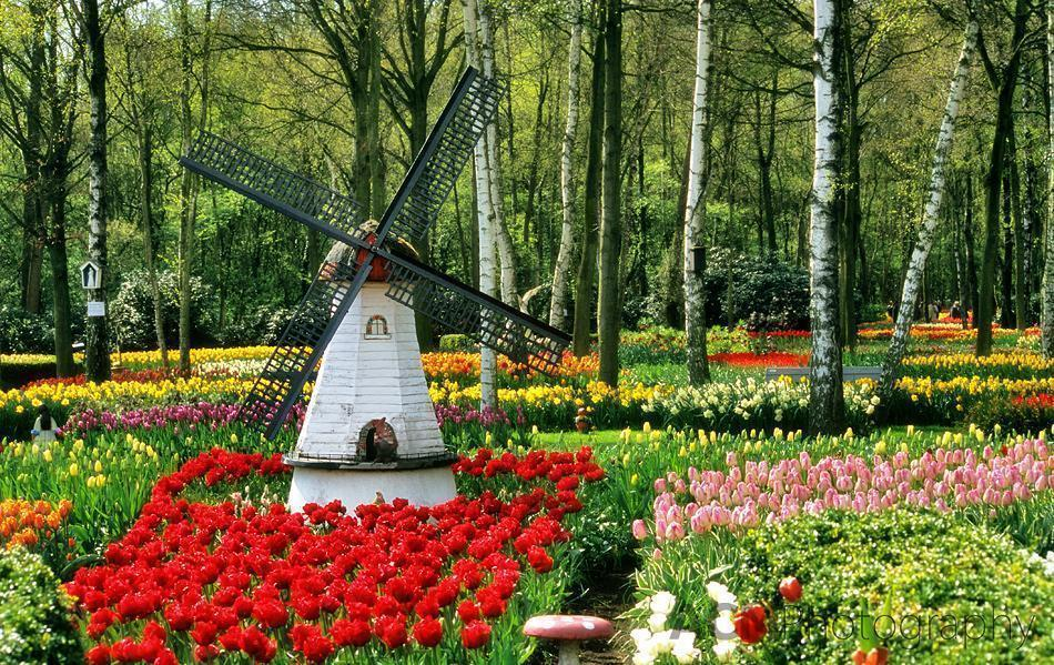 Vredehof Tulip Garden