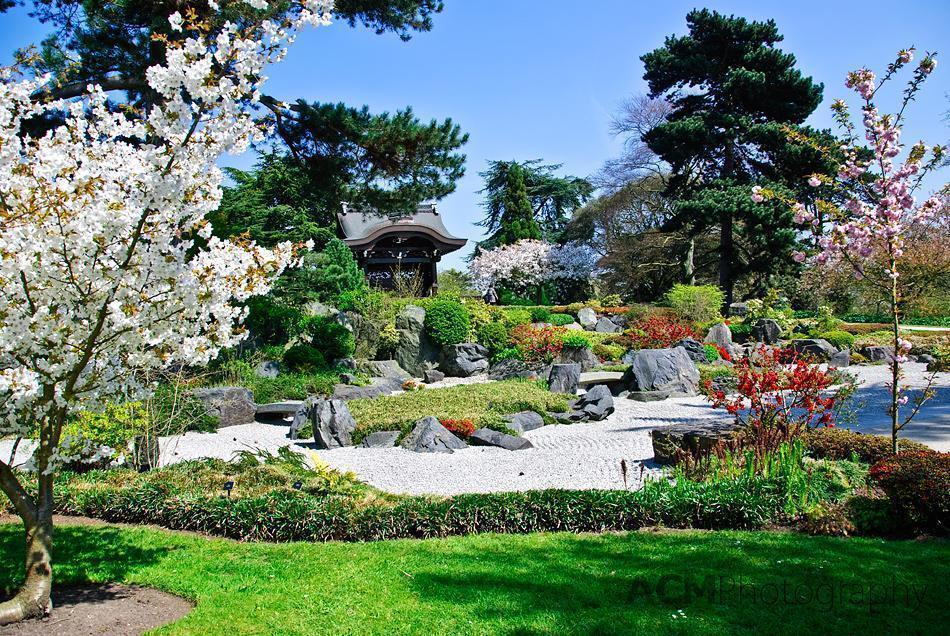 The Japanese Gardens at Kew