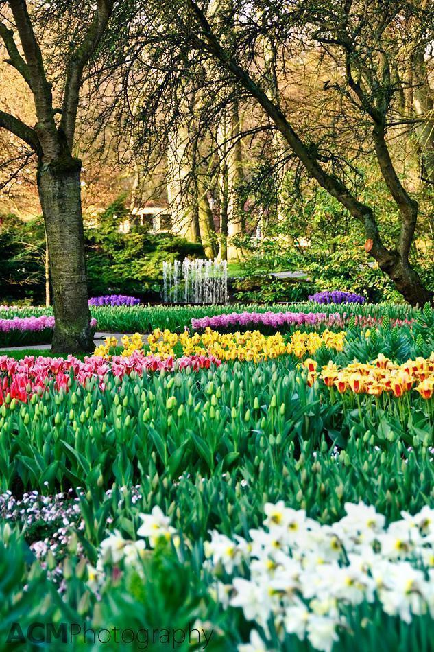 Kuekenhof Gardens, Lisse, The Netherlands