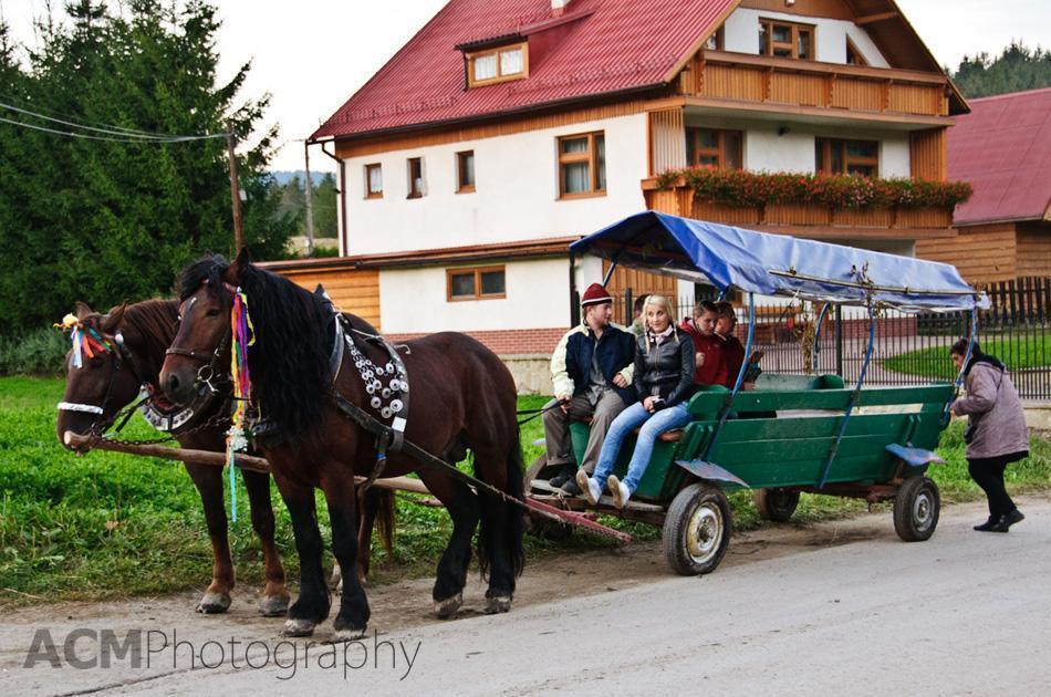 Horse cart in Istebna
