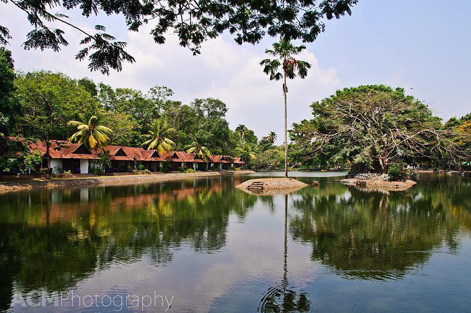 Bungalows beside the bird sanctuary at Taj Kumarakom