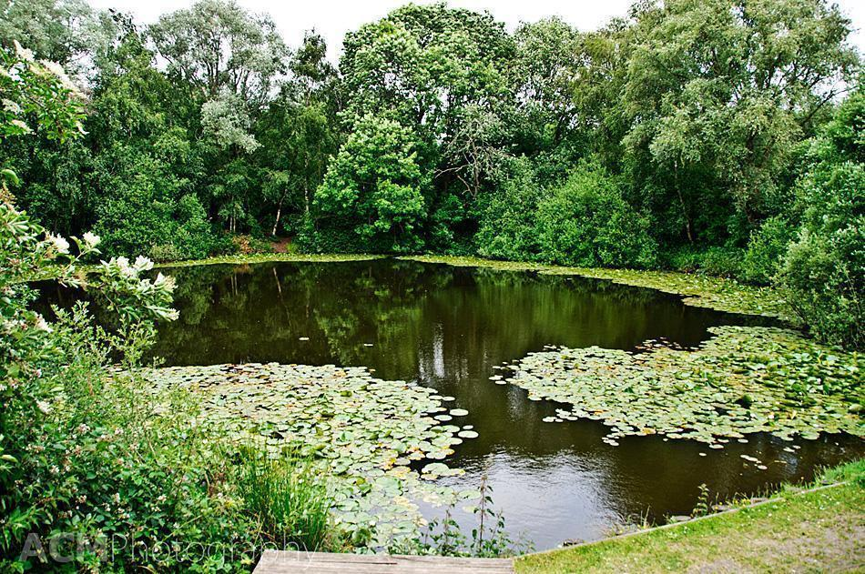 Spanbroekmolen, The Pool of Peace