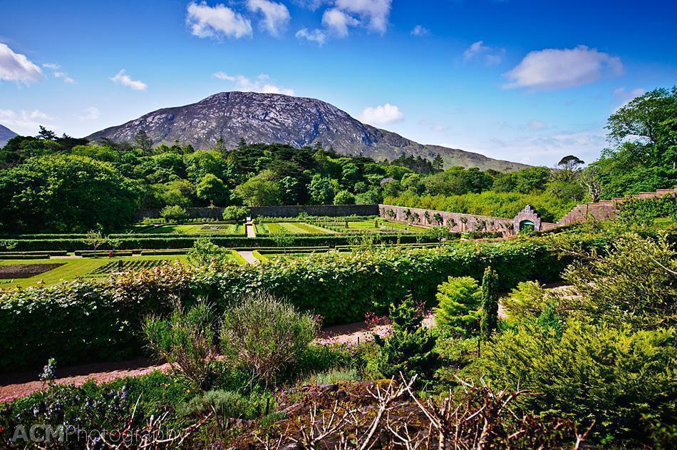 Viewing the Connemara Mountains from the garden