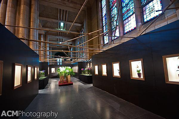 Magic of Orchids show at Koekelberg Basilica, Brussels