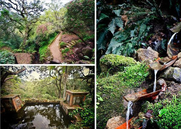 The woodland garden of Monserrate Palace, Sintra