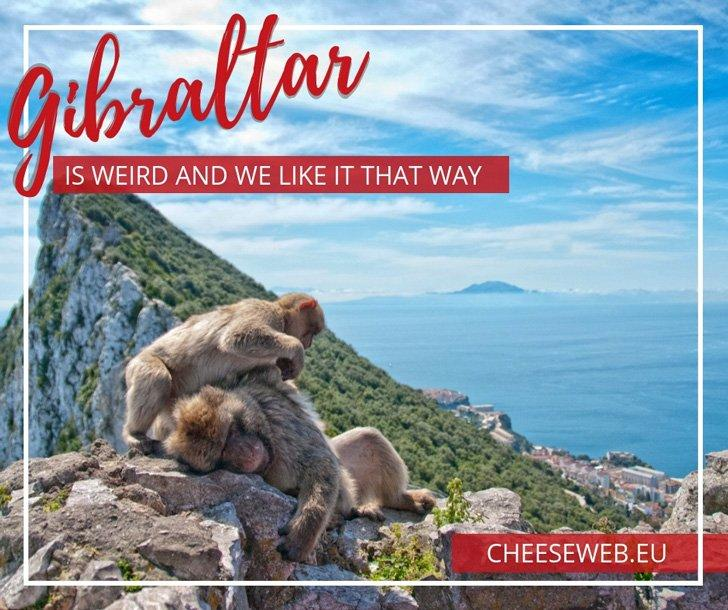 Gibraltar is weird. It's owned by England, yet dangles off the end of Spain. You have to drive across an airport runway to get to it and its main feature is a giant rock riddled with caves and inhabited by monkeys. We couldn't wait to discover all the weird things to do in Gibraltar!