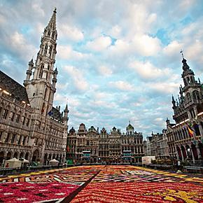 20120815 0006 2012 Flower Carpet, Grand Place, Brussels, Belgium