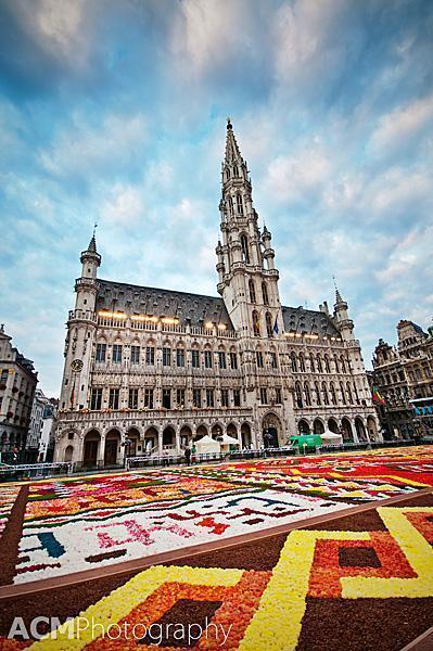 600000 begonias are used to make this year's Flower Carpet in Grand Place