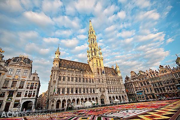 20120815 0048 2012 Flower Carpet, Grand Place, Brussels, Belgium
