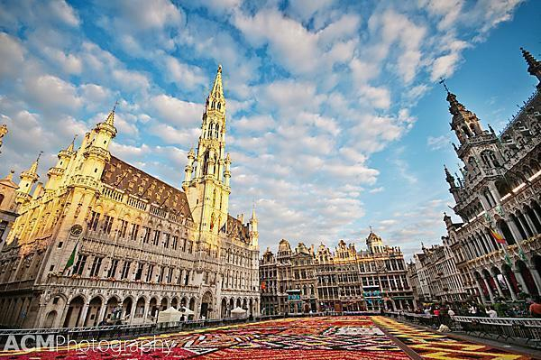 20120815 0054 2012 Flower Carpet, Grand Place, Brussels, Belgium