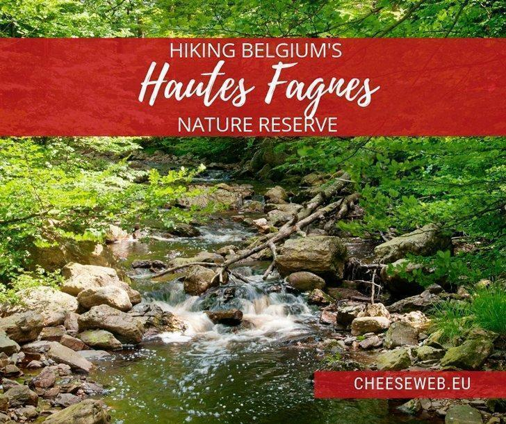 Secluded woodlands, waterfalls and hundreds of km of forest trails - this is hiking in the Hautes Fagnes Nature Reserve, in Belgium's Eastern Cantons - German-speaking area of Liege in Wallonia.