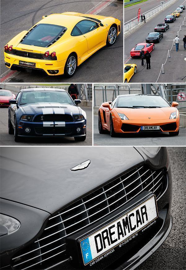 Choose your Dream Car
