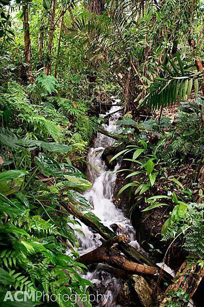 Waterfall in the Rainforest Biome, Eden Project