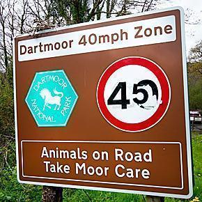 Take Moor Care in Dartmoor