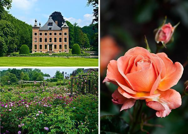 International Rose Garden of Coloma