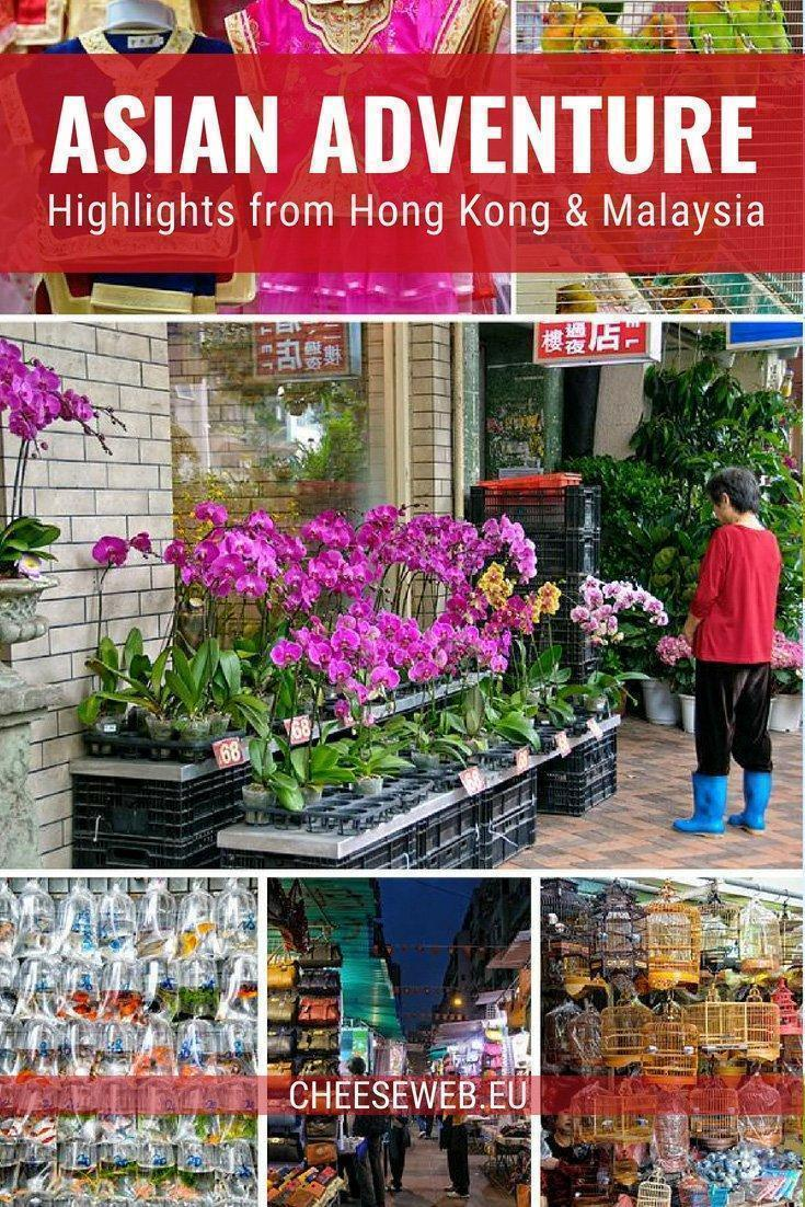 A teaser of photos from our recent trip to Hong Kong, China and Sabah, Malaysia on the island of Borneo.