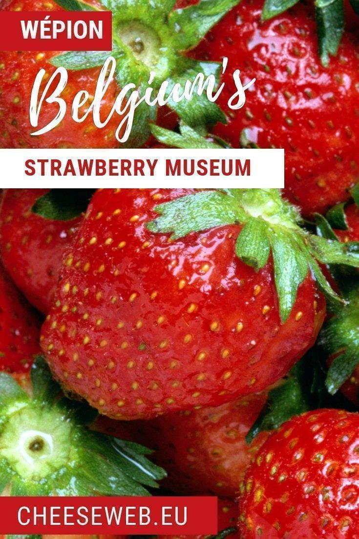 It's berry season in Europe and one town in Wallonia has been growing Belgium's best strawberries since the 1800s. Wépion Strawberries, or fraise de Wépion, are eagerly anticipated by Belgians each spring.