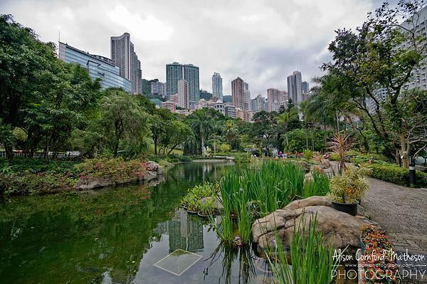 One of the few places in Hong Kong Park you can actually see the city.