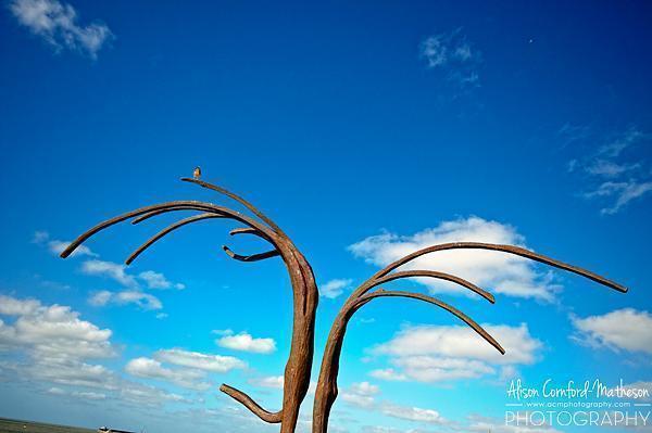 Dansende Golven, Dancing Waves, reach for the sky