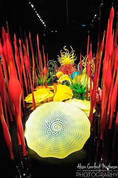 Chihuly's magical garden