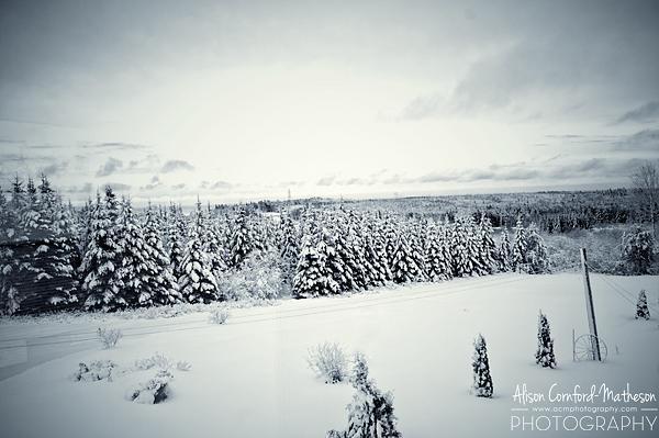 Snow in Canada