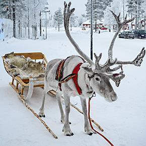 Enjoy a family holiday in Lapland