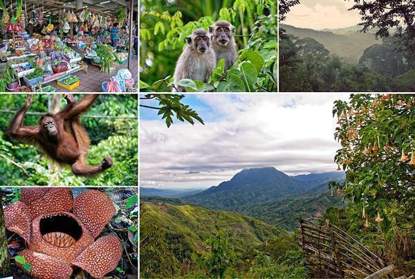 Malaysian Borneo was a beautiful adventure