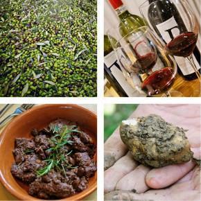 Food Activities at Castelfalfi, Tuscany, Italy