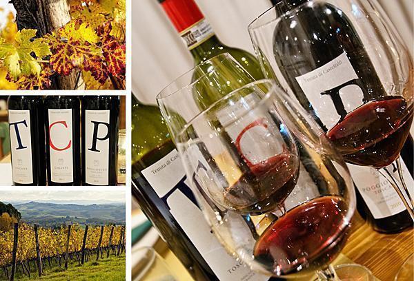 Tasting Castelfalfi's 3 wines