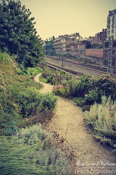 A beautiful garden on otherwise wasted land