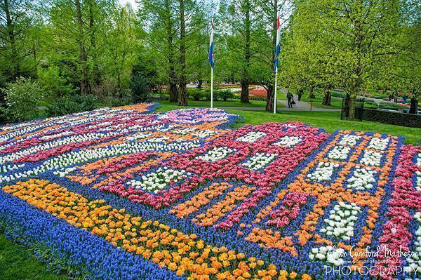 2014 Keukenhof Flower Mosaic