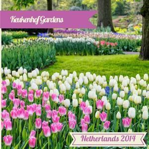 Visit Keukenhof Gardens, Lisse, Netherlands
