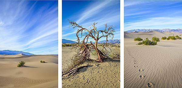 The sand dunes and mesquite of Death Valley