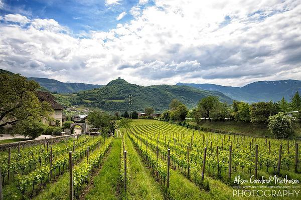 Picture perfect views on the South Tyrolean Wine Road
