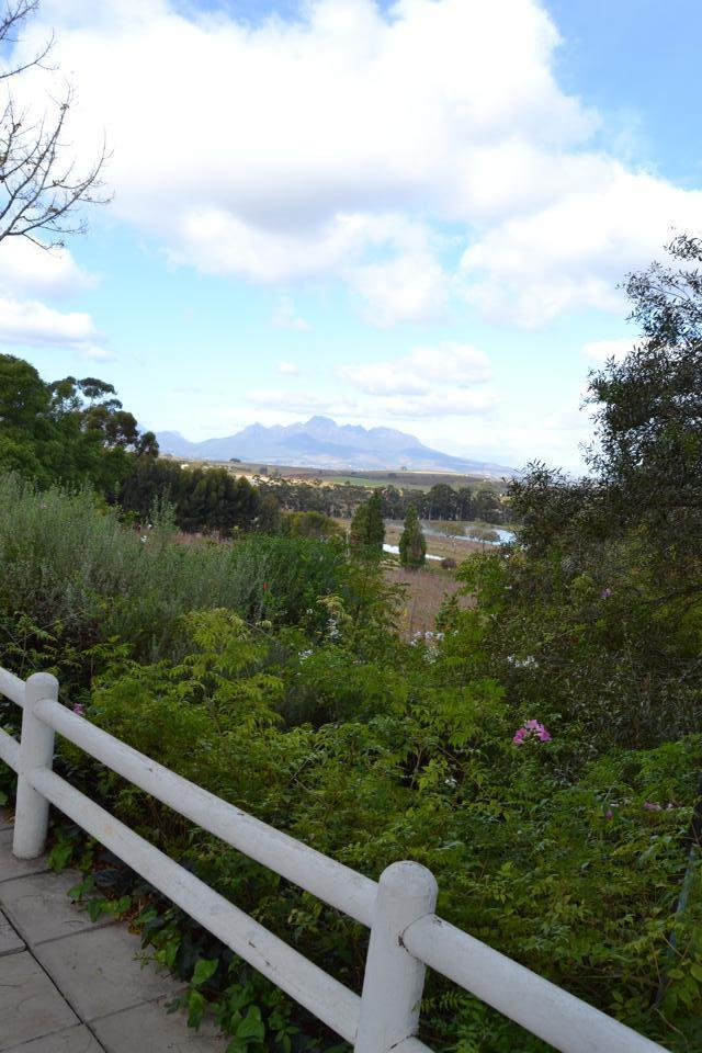 Stunning scenery along South Africa's wine route