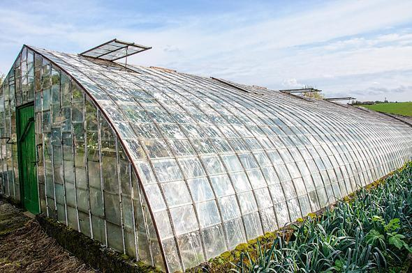 Greenhouses , like this one, once dominated the landscape of Hoeilaart.