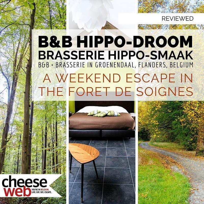 B&B Hippo-Droom is a great base for an escape in the Foret de Soignes.