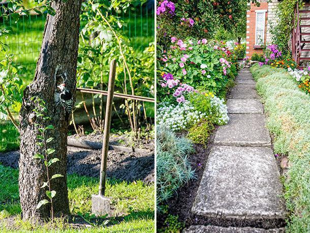 Grandma's garden is colourful and inviting - to humans and wildlife.