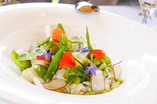 The world's most beautiful salad at Vrienden van de Smaak