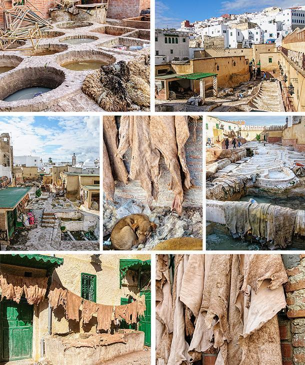The tannery of the Tetouan Medina