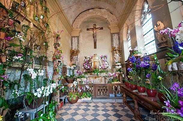 Orchids galore inside the chapel