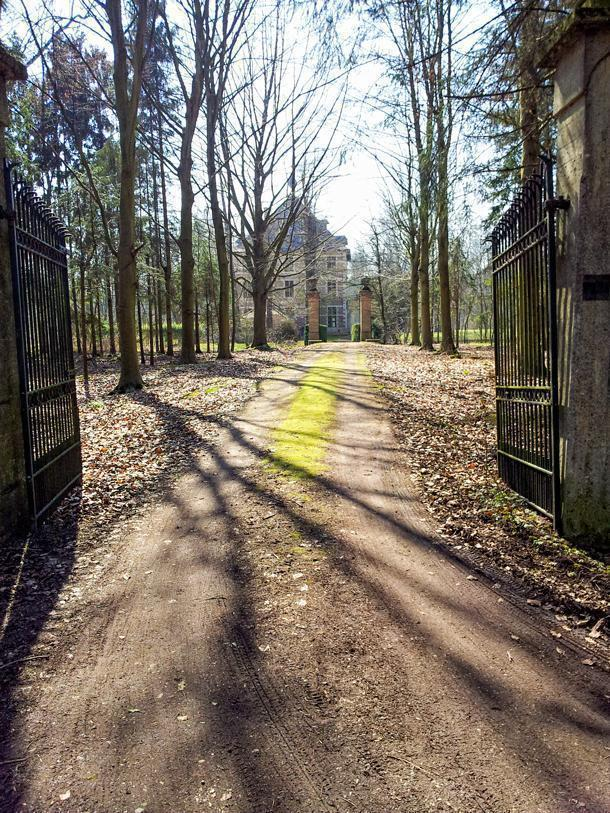 The Heverlee Woods, near Leuven