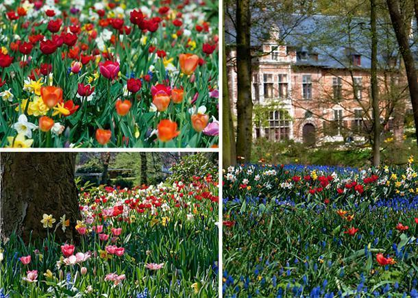 The plantings at Groot-Bijgaarden tend to be wilder than those at Keukenhof
