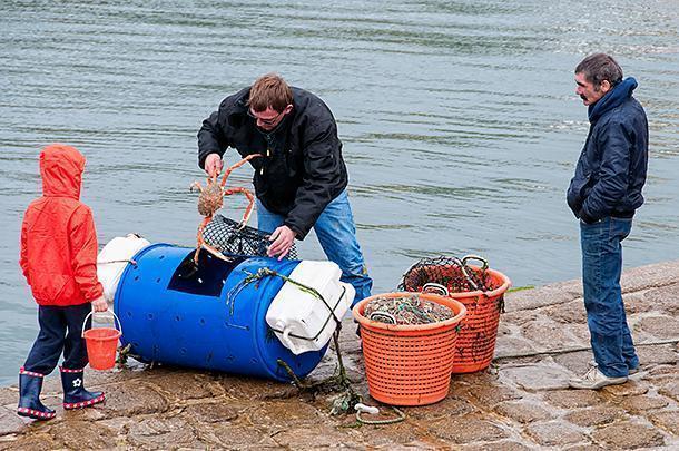 Fishermen land all manner of shellfish in Barfleur