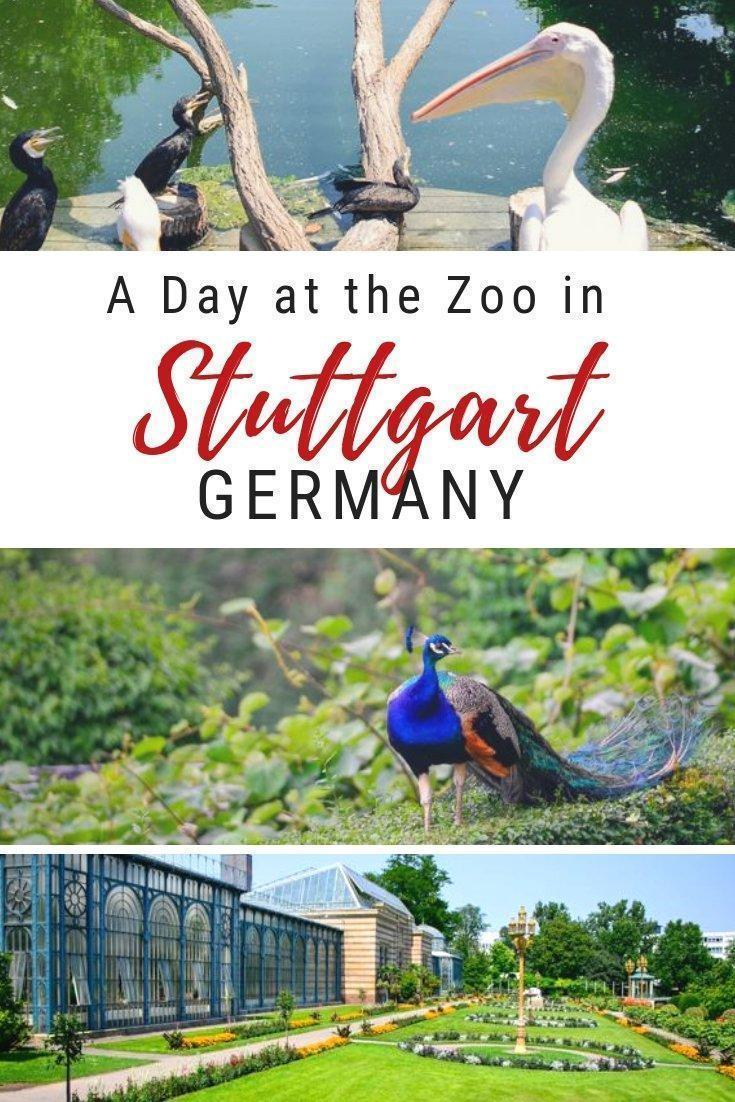 The Wilhelma Zoologisch-Botanischer Garten in Stuttgart, Germany is a beautiful zoo and garden that is fun for the whole family.