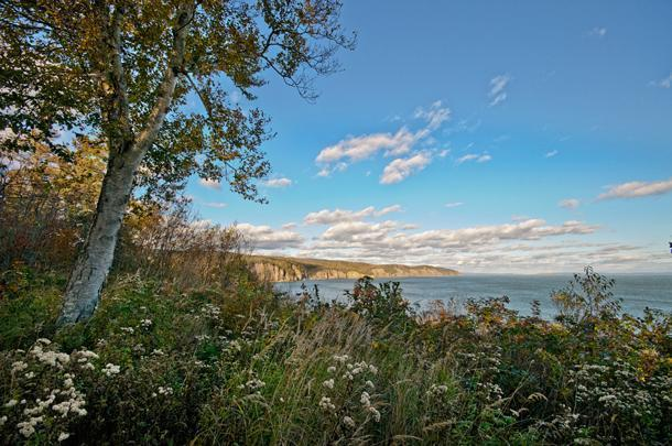 It's worth getting off the highways to explore Nova Scotia's rugged coastline
