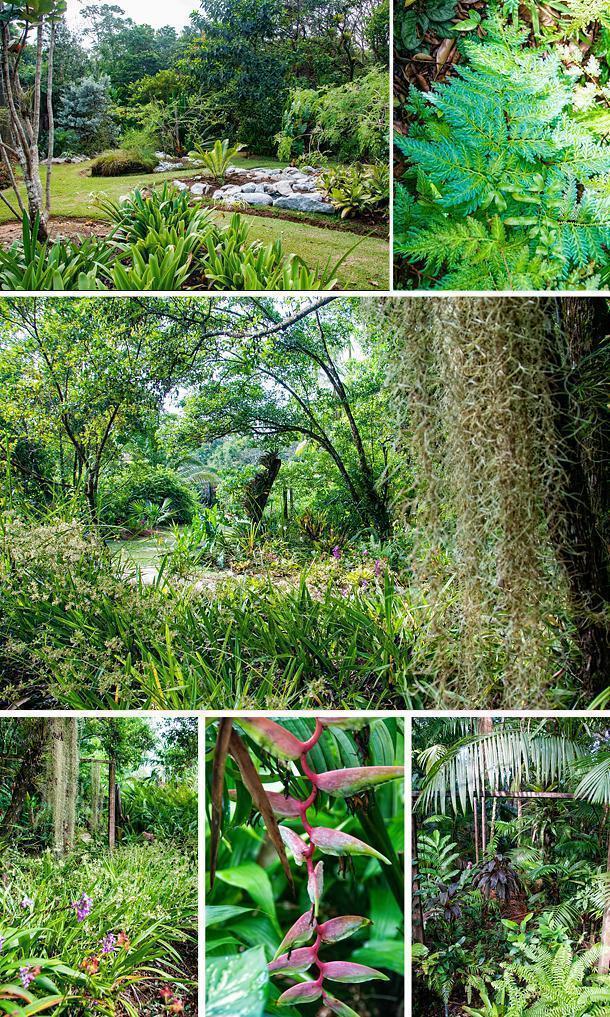 The Botanical Garden of Guyane, Macouria